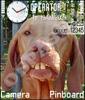 Зубастый пес