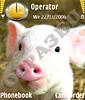 Розовый свин