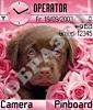 Розовая грусть