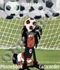 Футбольные звезды