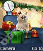 Котик в подарок