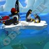 Дикий заезд пингвинов!!!